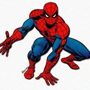spiderspider